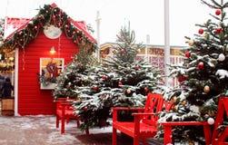 Красиво украшенные рождественские елки стоковое изображение