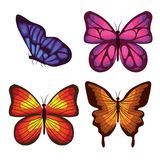 Красивые бабочки летая комплект Стоковое Фото