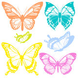 Красивые бабочки цвета, изолированные на белизне Стоковая Фотография RF