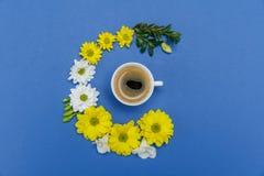 Красивые белые и желтые цветки и чашка кофе хризантемы на сини Стоковая Фотография RF