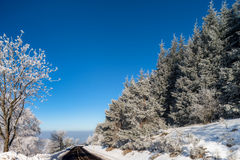 Красивые белые, который замерли деревья на предпосылке голубого неба рисуночно стоковое изображение