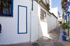 Красивые белые стены украшенные с красочными цветками в Cordoba стоковая фотография rf