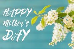 Красивые белые цветки в вазе, концепции дня ` s матери Стоковое Изображение