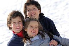 Красивые 3 брать в снеге Стоковые Фото