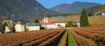 Красивые виноградники на аббатстве Novacella, южном Тироле, Bressanone, Италии Монастырь Augustinian канонов регулярн Neustift стоковые изображения rf