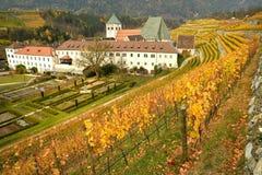 Красивые виноградники на аббатстве Novacella, южном Тироле, Bressanone, Италии Монастырь Augustinian канонов регулярн Neustift стоковое изображение