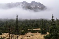 Красивые виды гор Tatra в дне осени тумана Стоковая Фотография RF