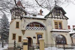 Красивые виллы на переулке Kasztanami стручка в Rzeszow, Польше Стоковая Фотография