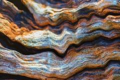 Красивые волны в древесине Стоковое фото RF