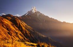 Красивые гималайские горы стоковое изображение rf