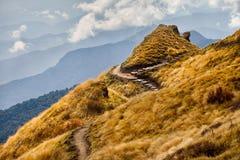 Красивые гималайские горы стоковые изображения
