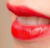 Красивые губы с красной губной помадой Стоковые Изображения RF