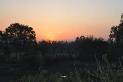 Красивые деревья темноты захода солнца Стоковые Изображения