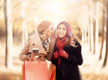 Красивые девушки идя в парк с красочными сумками Стоковая Фотография RF
