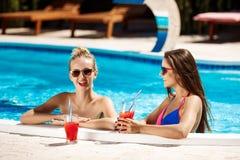Красивые девушки усмехаясь, говорящ, выпивая коктеили, ослабляя в бассейне Стоковое фото RF