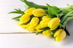 Красивые желтые тюльпаны на цветках весны белого деревянного космоса полисмена предпосылки красивых Стоковые Изображения RF