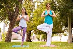 Красивые женщины делая йогу Стоковая Фотография