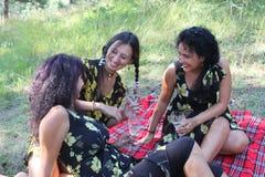 Красивые женщины на пикнике Стоковые Фото