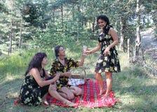 Красивые женщины на пикнике Стоковые Фотографии RF
