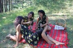 Красивые женщины на пикнике Стоковое Изображение RF