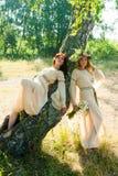 Красивые женщины ослабляют на природе Стоковые Фото