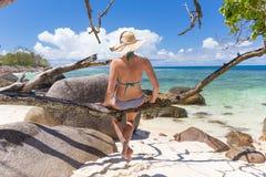 Красивые женщины ослабляя на ветви дерева на пляже изображения совершенном тропическом Стоковое Изображение RF