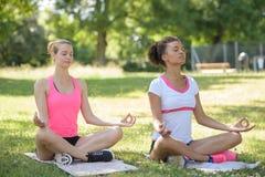 Красивые женщины практикуя йогу в парке Стоковые Фото