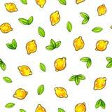 Красивые желтые плодоовощи лимона изолированные на белой предпосылке Чертеж лимона картина безшовная Стоковое Изображение