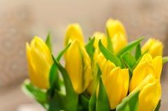 Красивые желтые расплывчатые тюльпаны весны на предпосылке bokeh Стоковая Фотография RF