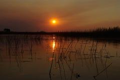 Красивые заходы солнца Стоковые Изображения RF