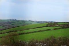 Красивые зеленые холмы Корнуолла, Англии стоковые фото