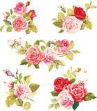 Красивые изолированные цветки на белой предпосылке Комплект различных красивых элементов флористического дизайна Иллюстрация вектора
