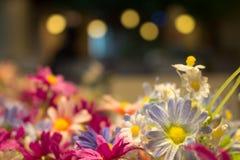 Красивые искусственные цветки с винтажным влиянием стиля заполняют внутри p Стоковые Фото