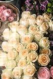 Красивые и душистые розы Стоковая Фотография RF
