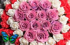 Красивые и душистые розы Стоковые Изображения