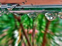 Красивые капельки дождя стоковые изображения rf