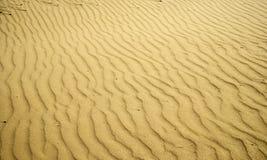 Красивые картины песчанных дюн, сформированные ветром на песочном побережье стоковое изображение
