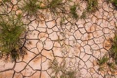 Красивые картины созданные в высушенных грязи/утесе и кустарниках найденных в глуши национального парка неплодородных почв стоковые фото
