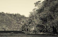 Красивые кокосы приставают к берегу, Playa del Кокос - Коста-Рика Стоковые Изображения