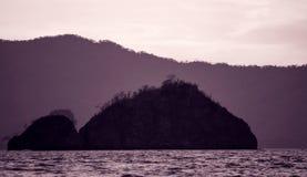 Красивые кокосы приставают к берегу, Playa del Кокос - Коста-Рика Стоковое Фото