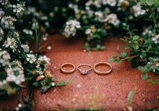 Красивые кольца золота лежат против цветков предпосылки белых Стоковое Фото