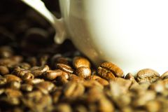 Красивые кофейные зерна как изображение предпосылки стоковые фотографии rf