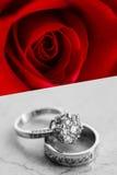 Красивые кольца ювелирных изделий с подняли Стоковые Изображения RF