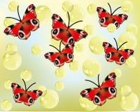 Красивые красные бабочки Стоковые Изображения RF