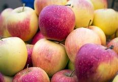 Красивые красные и желтые яблоки на рынке Стоковое Фото