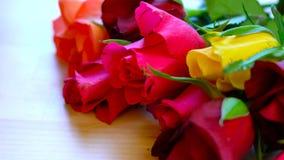 Красивые красные, розовые, желтые и оранжевые розы, макрос крупного плана Стоковое Изображение RF