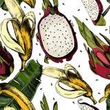 Красивые красочная картина с листьями и сочный Иллюстрация штока