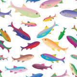 Красивые красочные зеленые рыбы Стоковые Фотографии RF