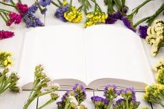 Красивые красочные цветки вокруг открытой пустой книги на белизне сватают Стоковое Фото