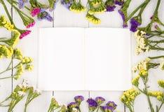 Красивые красочные цветки вокруг открытой пустой книги на белизне сватают Стоковое Изображение